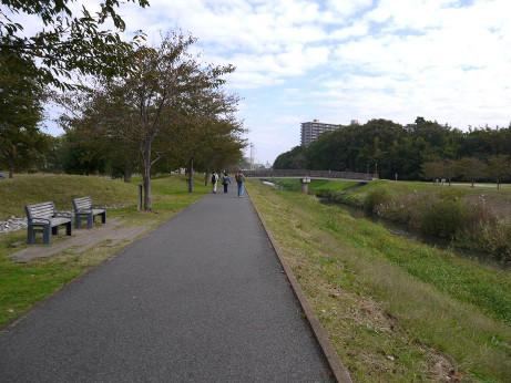 20121201_ooborigawa4