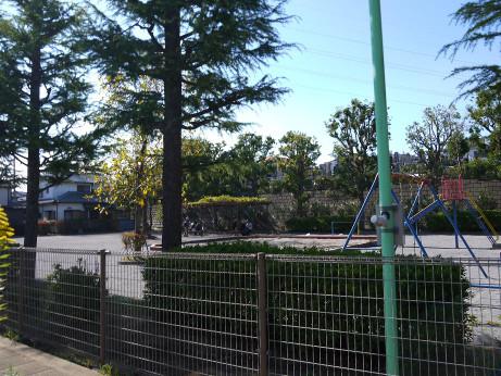 20121211_matsugazaki_dai1_park