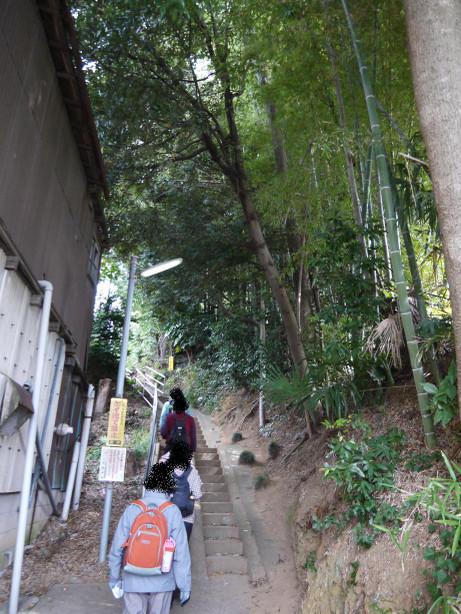 20121211_road02