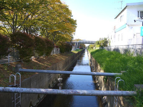 20121211_suiro