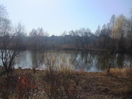 20121218_kandori_park_2