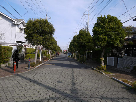 20121218_road03