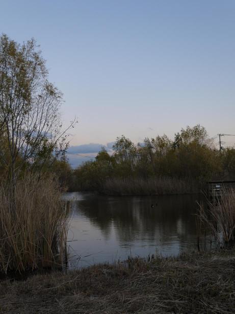 20121221_park6