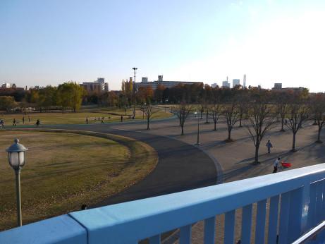 20121223_oomiya_3park_1