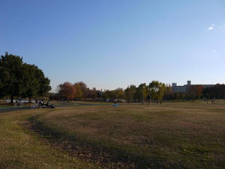 20121223_oomiya_3park_4