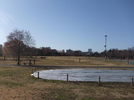 20121223_oomiya_3park_6