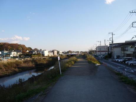 20121230_shibagawa_road1