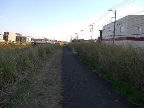 20121230_shibagawa_road2