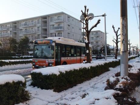 20130116_snow_bus