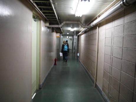 20130203_tsuro