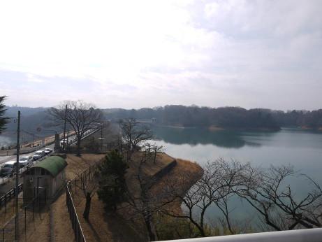 20130223_sayama_lake1