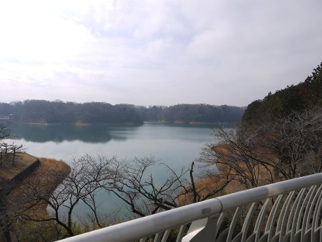 20130223_sayama_lake2