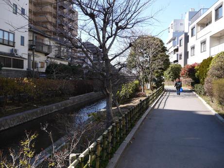 20130315_park2