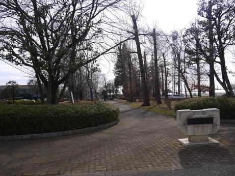 20130411_suwayama_park