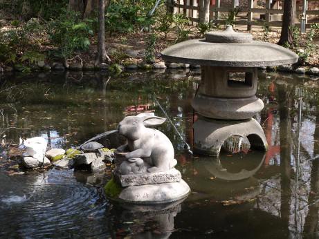 20130421_funsui_usagi