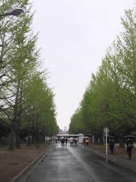 20130423_kounai