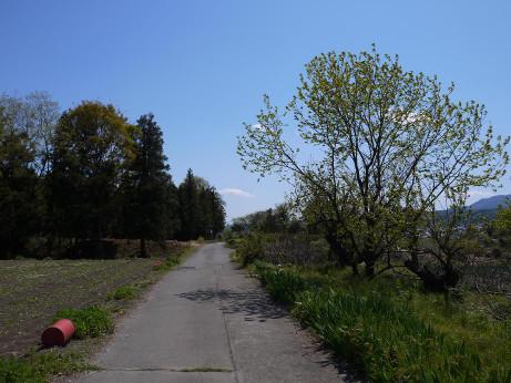 20130616_road4