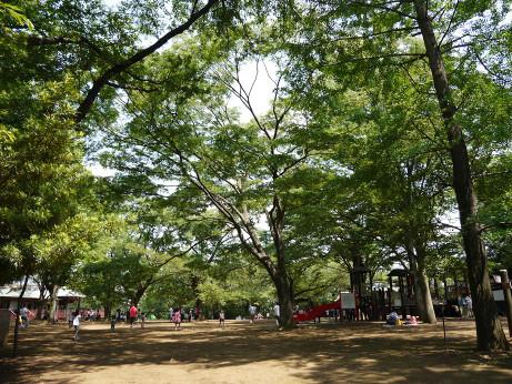20130623_hiroba