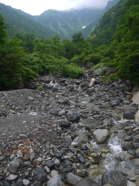 20130731_machigasawa3