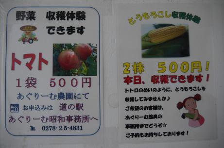 20130815_syukaku