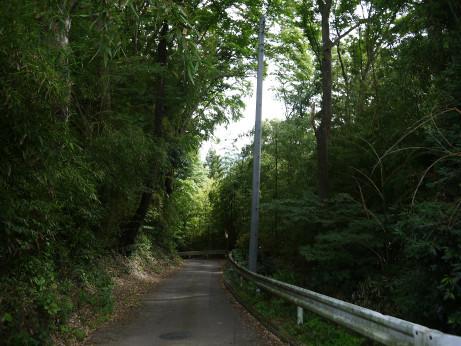 20130822_road