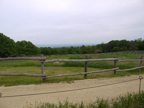 20130907_nagame