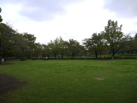 20131008_park