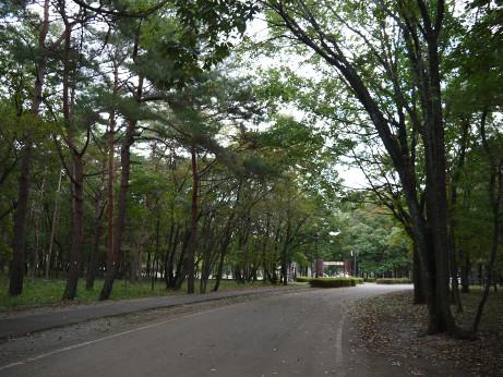 20131009_road