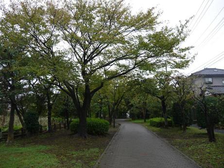 20131022_sansakuro2