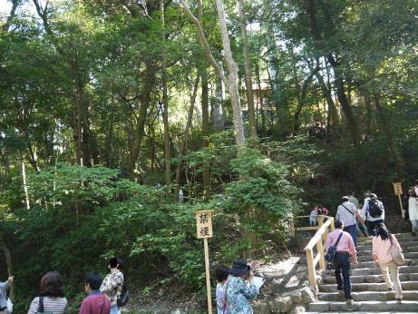 20131031_takanomiya
