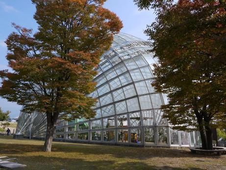 20131120_wanpaku_dome