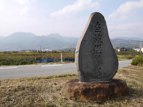 20131127_kuyoutou