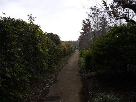 20131217_road05