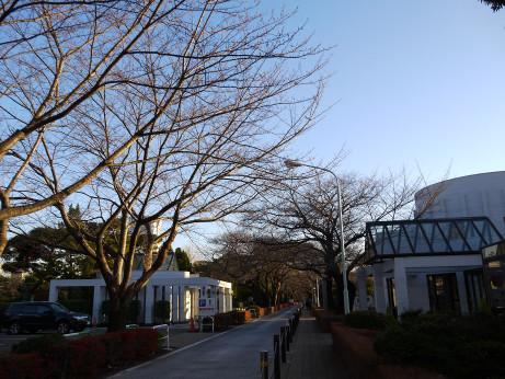 20131224_aoyama_boti