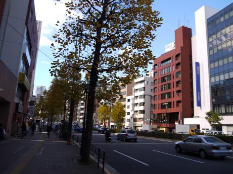 20131224_road03
