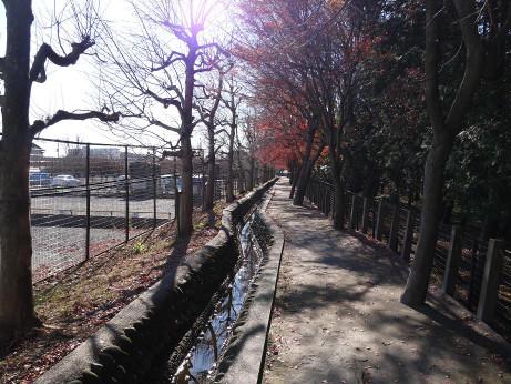 20131225_heirinjibori2