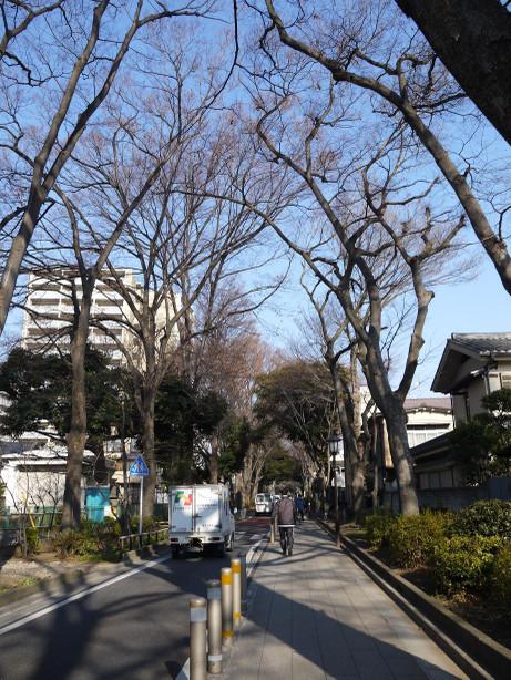 20140122_sandou2