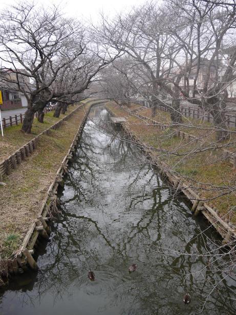 20140207_singasi_river