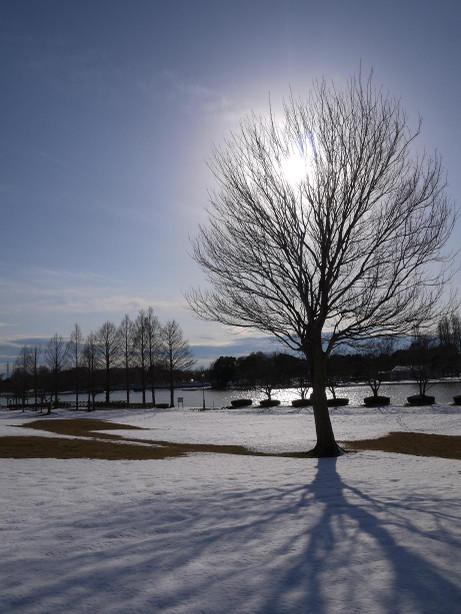 20140211_snow03