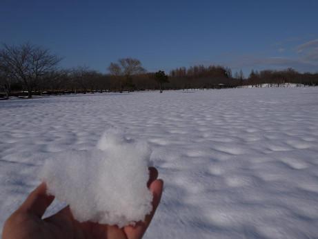 20140211_snow04
