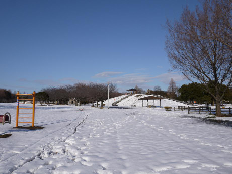 20140211_snow13