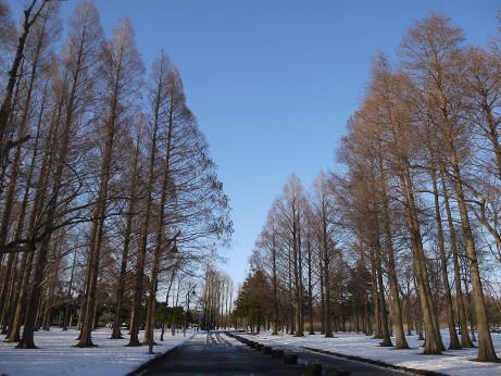 20140213_namiki