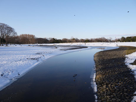 20140213_snow03