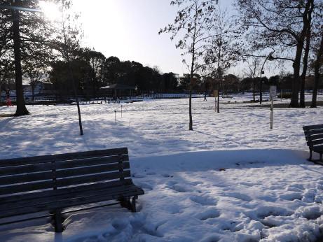 20140213_snow07