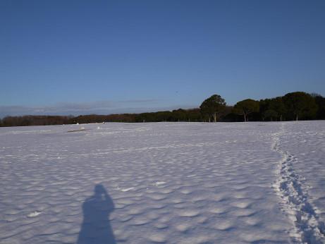 20140213_snow08