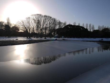 20140213_snow09