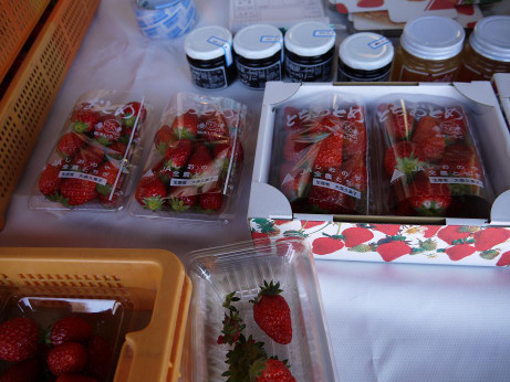 20140227_strawberry2