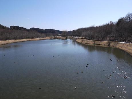 20140228_sinsui_park06