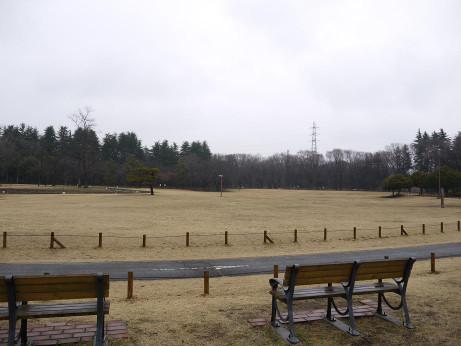 20140305_kodomonohiroba