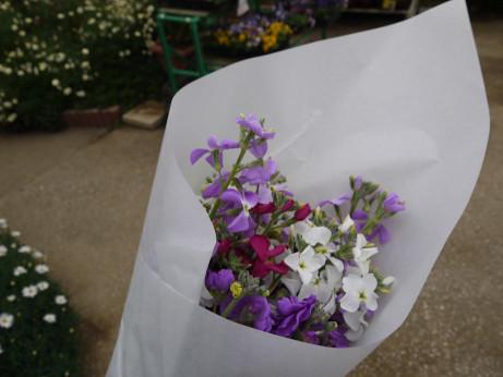 20140322_flower
